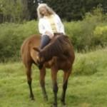 Dr. Suzan Seelye Riding Clinic 2014